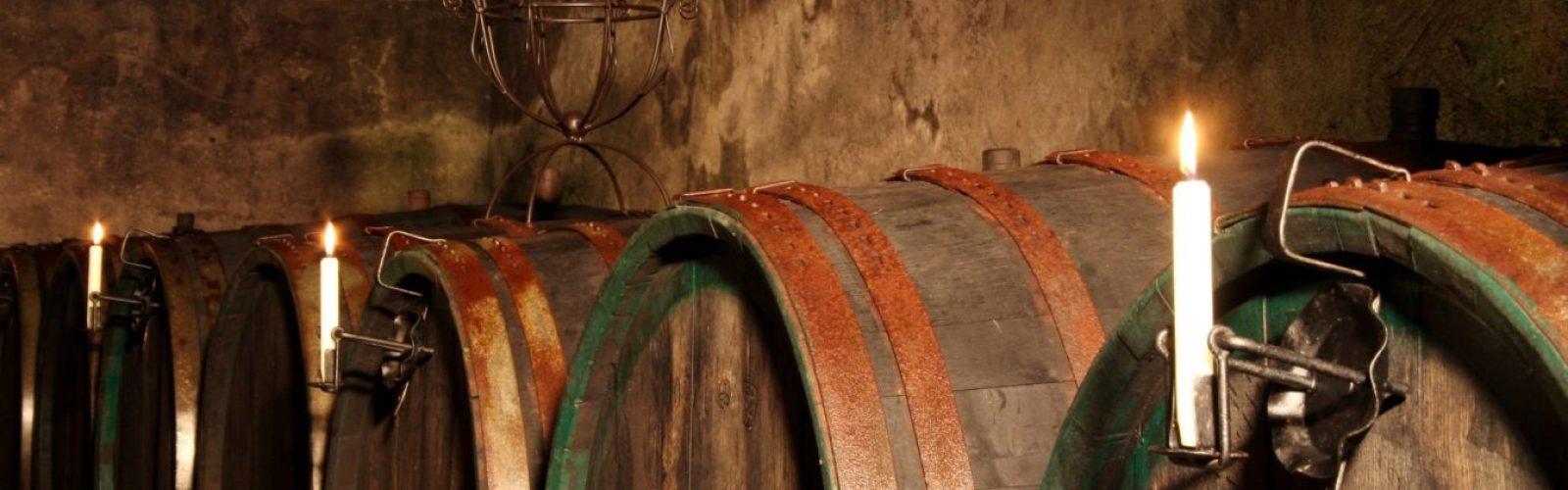 der alte Holzfasskeller unter der Weingalerie